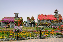 Houses covered in flowers at Miracle Garden Dubai United Arab Emirates