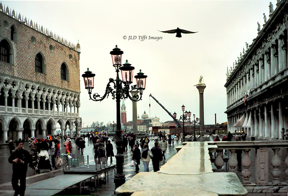 Piazzetta di San Marco, Doges' Palace at left, Biblioteca Sansoviana at right, winged lion column beyond.  A seagull soars over the lamposts.  Pedestrians on the raised walkways set up for aqua alta.