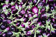 A pile of fresh eggplant