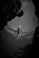 Black and white of Indo-Pacific reef scenes and big marine life.