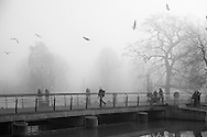 People cross a bridge as winter fog settles in over a public park in Odense, Denmark. ©Brett Wilhelm