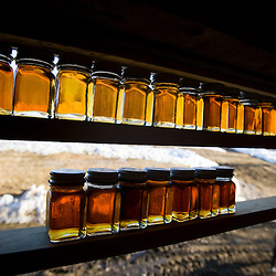Syrup samples at Fifield's Sugarhouse in Strafford, Vermont.