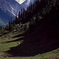 Nomads camped in a summer pasture (Dzhailyau) near Khan Tengri, 6994 meters, in the Tien Shan mountains.