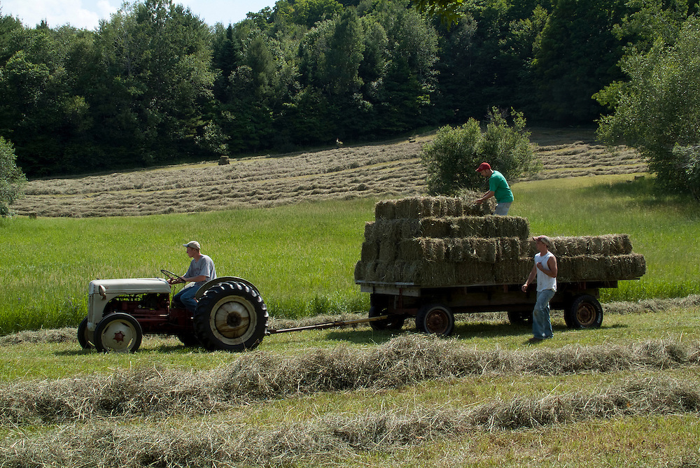 Haying in Vermont
