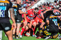 Carl HAYMAN - 05.04.2015 - Toulon / Londres Wasps - 1/4Finale European Champions Cup<br />