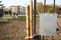 20111110 VANDALI ORTO VIA POLETTI-