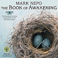 2018 Mark Nepo calendar by Amber Lotus  featuring cover photography by Elena Ray<br />