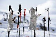 Wool mittens on ski poles, Atztaler Alps, Italy.