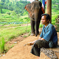 "A Thai ""mahout"" or elephant keeper at a camp in the mountains of northern Thailand."