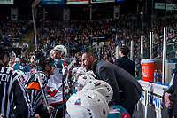 KELOWNA, CANADA - APRIL 30: Kelowna Rockets' head coach Jason Smith stands on the bench and speaks to referee Steve Papp against the Seattle Thunderbirds on April 30, 2017 at Prospera Place in Kelowna, British Columbia, Canada.  (Photo by Marissa Baecker/Shoot the Breeze)  *** Local Caption ***
