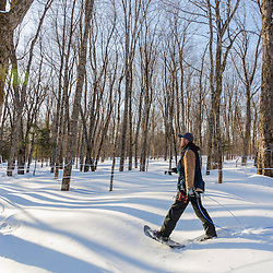Jean Francois Faucher checking the sap lines and taps on the LaRiviere sugarbush in Big Six Township, Maine. This property has more than 300,000 maple syrup taps and produces 3 - 4 percent of the US maple syrup crop.