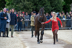 Price Jonelle, (NZL), The Deputy<br /> First Horse Inspection - Mitsubishi Motors Badminton Horse Trials <br /> Badminton 2015