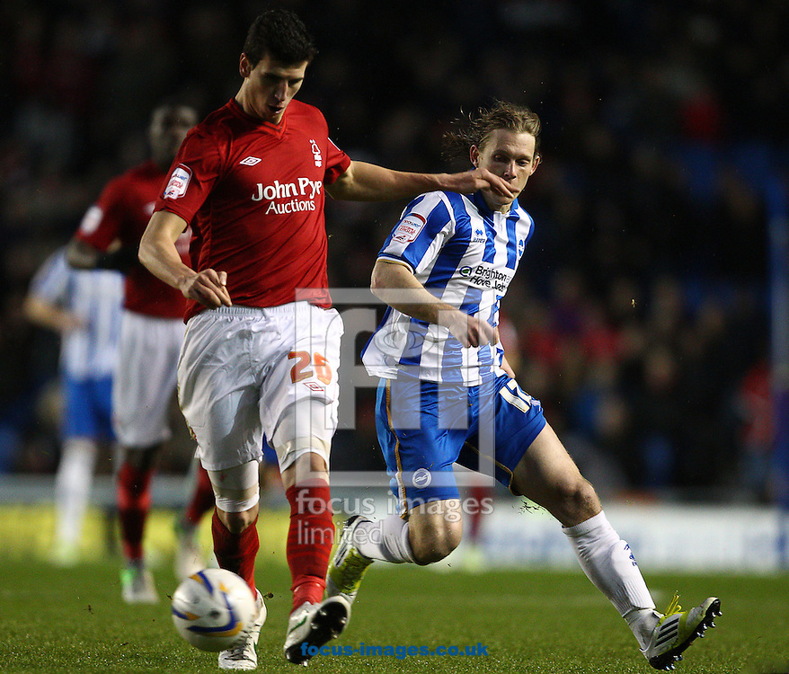 Picture by Paul Terry/Focus Images Ltd +44 7545 642257.15/12/2012.Craig Mackail-Smith of Brighton and Hove Albion and Daniel Sanchez Ayala of Nottingham Forest during the npower Championship match at the American Express Community Stadium, Brighton and Hove.