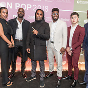 NLD/Amsterdam/20180213 - Edison Pop Awards 2018, Rotterdam Airlines