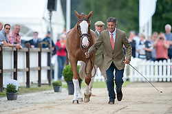 Nicholson Andrew, (NZL), Perfect Stranger<br /> First Horse Inspection <br /> CCI4* Luhmuhlen 2016 <br /> © Hippo Foto - Jon Stroud