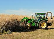 Switchgrass Harvesting Mich's