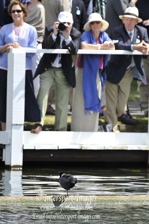 Henley, Great Britain.  Henley Royal Regatta. River Thames Henley Reach.  Royal Regatta. River Thames Henley Reach.  Friday   01/07/2011  [Mandatory Credit Peter Spurrie r/ Intersport Images] . HRR