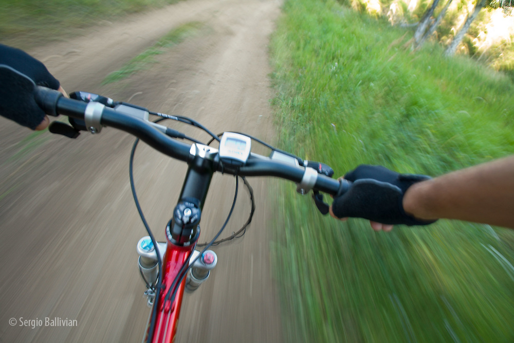 A rider's point of view on a mountain bike riding single-track in Nederland, Colorado.