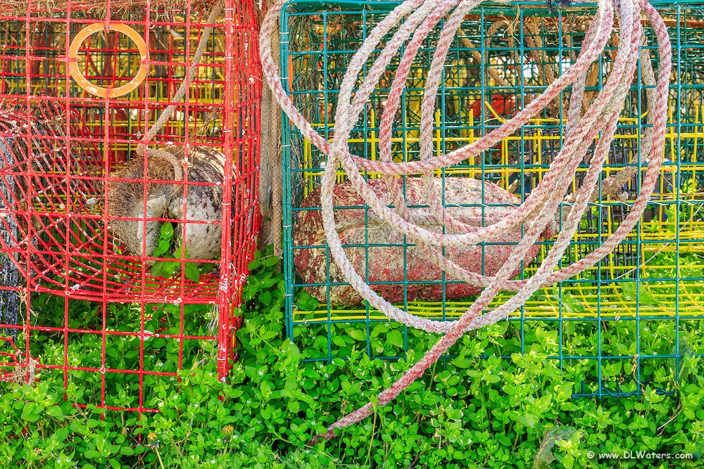 Still life of crab traps's surrounded by clovers in Wanchese North Carolina.