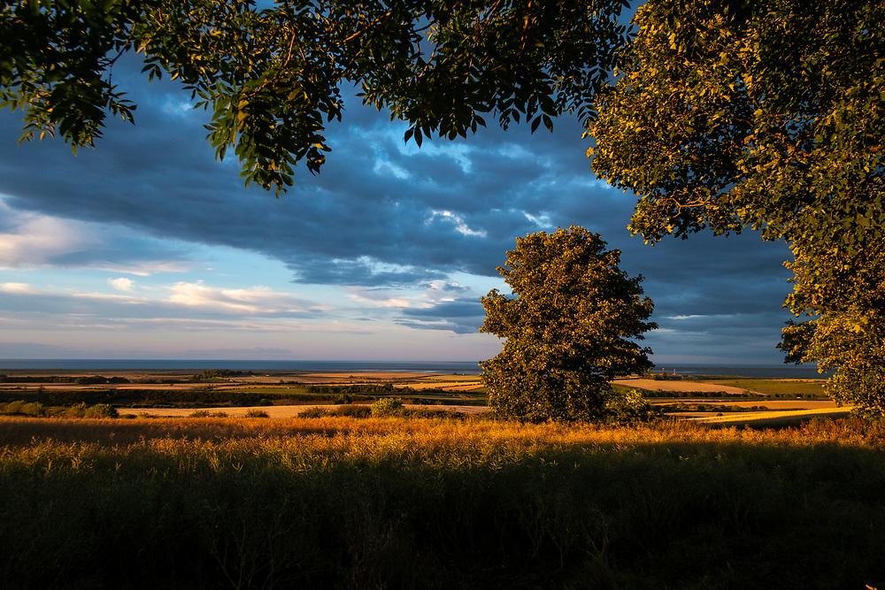View towards the coast from West Kyloe, Northumberland, England, UK<br /> Photo: Ed Maynard<br /> 07976 239803<br /> www.edmaynard.com