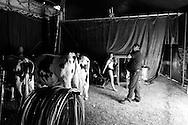 Circus life 14, Sydney