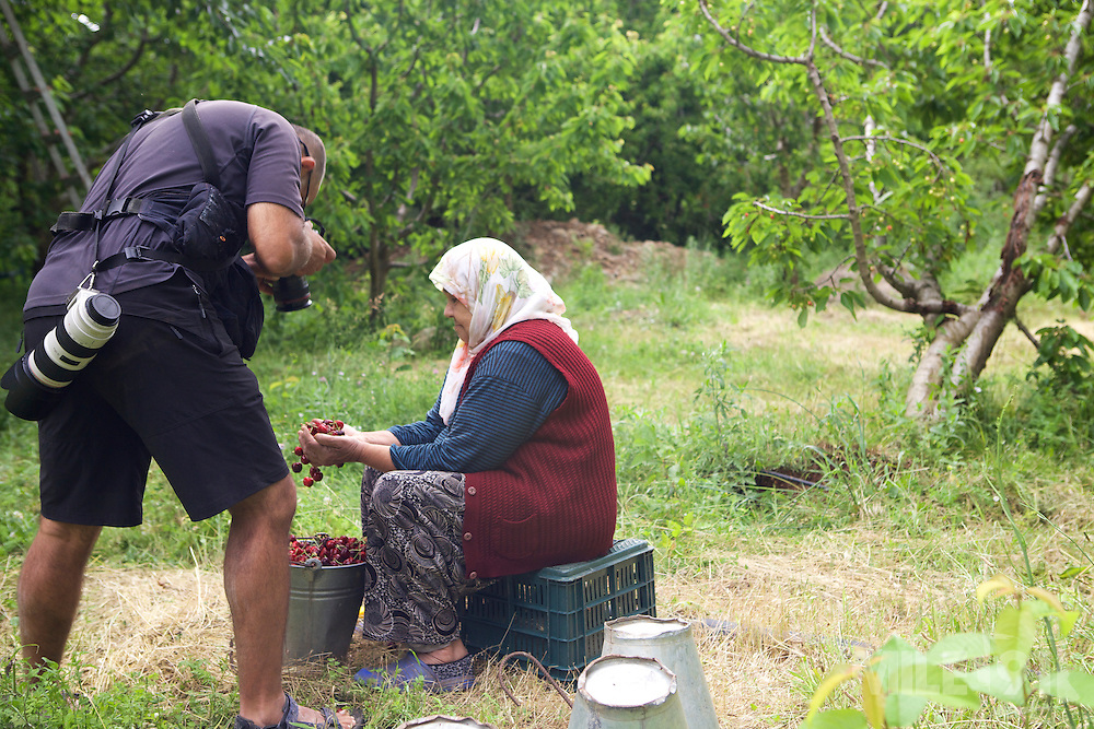 A photographer taking pictures of a cherry farmer, Turkey.