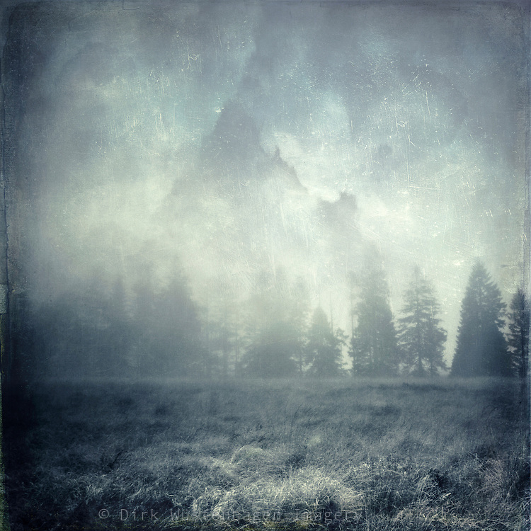 Fog mood in the High Fens<br />