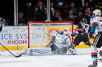 KELOWNA, CANADA -FEBRUARY 5: Jackson Whistle #1 of the Kelowna Rockets makes a save against the Red Deer Rebels on February 5, 2014 at Prospera Place in Kelowna, British Columbia, Canada.   (Photo by Marissa Baecker/Getty Images)  *** Local Caption *** Jackson Whistle;