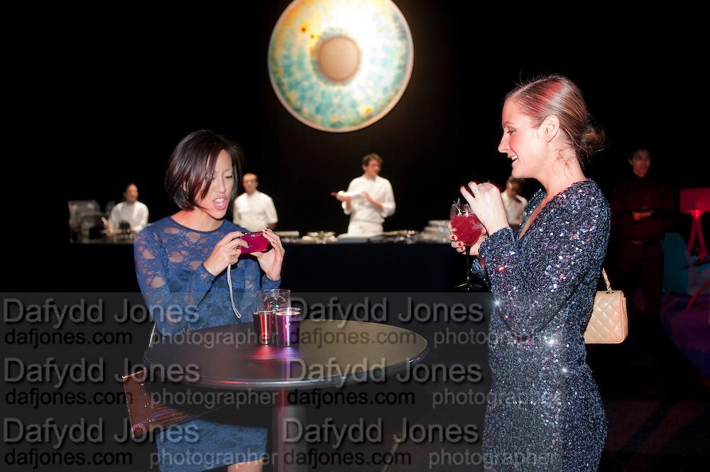 HELENA LEE; CLAIRE BRAYFORD, Grey Goose Winter Ball to Benefit the Elton John AIDS Foundation. Battersea park. London. 29 October 2011. <br /> <br />  , -DO NOT ARCHIVE-&copy; Copyright Photograph by Dafydd Jones. 248 Clapham Rd. London SW9 0PZ. Tel 0207 820 0771. www.dafjones.com.