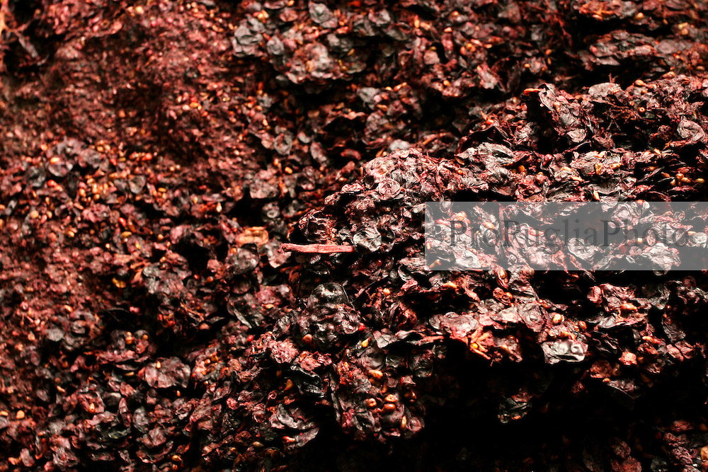 Questo è ciò che rimane dei grappoli d'uva pigiati. Queste, chiamate vinacce, in passato venivano riutilizzate per fare l'acqua vite.