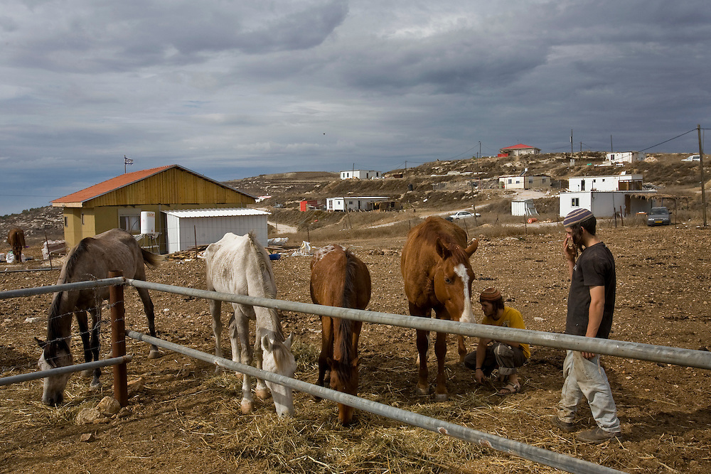Israeli settlers feed their horses in the settlement of Havat Gilad.