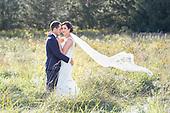 Monica & Greg's Bellamere Winery wedding in London, Ontario