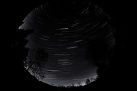 Night Sky Over New Jersey. Composite of images (01:00-01:59)  taken with a Nikon D850 camera and 8-15 mm fisheye lens (ISO 800, 10 mm, f/5.6, 30 sec).