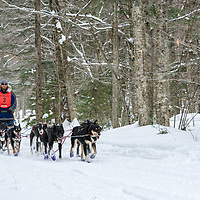Sandwich Sled Dog Races 45 Miles.