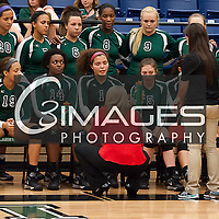 LRHS Volleyball 2014-2015