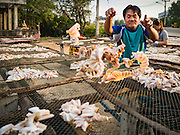 22 FEBRUARY 2017 - BAN LAEM, PETCHABURI, THAILAND: A worker sorts fish to dry on a rack in Ban Laem, Thailand. The fish, a type of small sting ray, are dried in the sun for a day and then sold. They are used in fried dishes.       PHOTO BY JACK KURTZ
