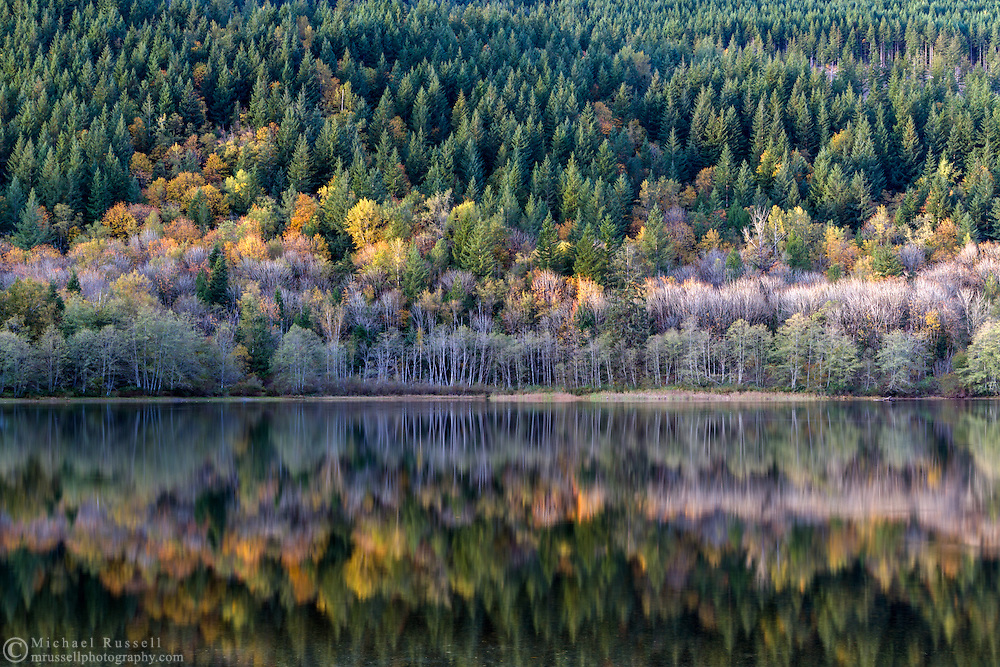 "Fall foliage colours reflecting on the surface of Deer Lake in Sasquatch Provincial Park near Harrison Hot Springs, British Columbia, Canada. Photographed from ""The Point"" at Deer Lake near the Bench Campground."