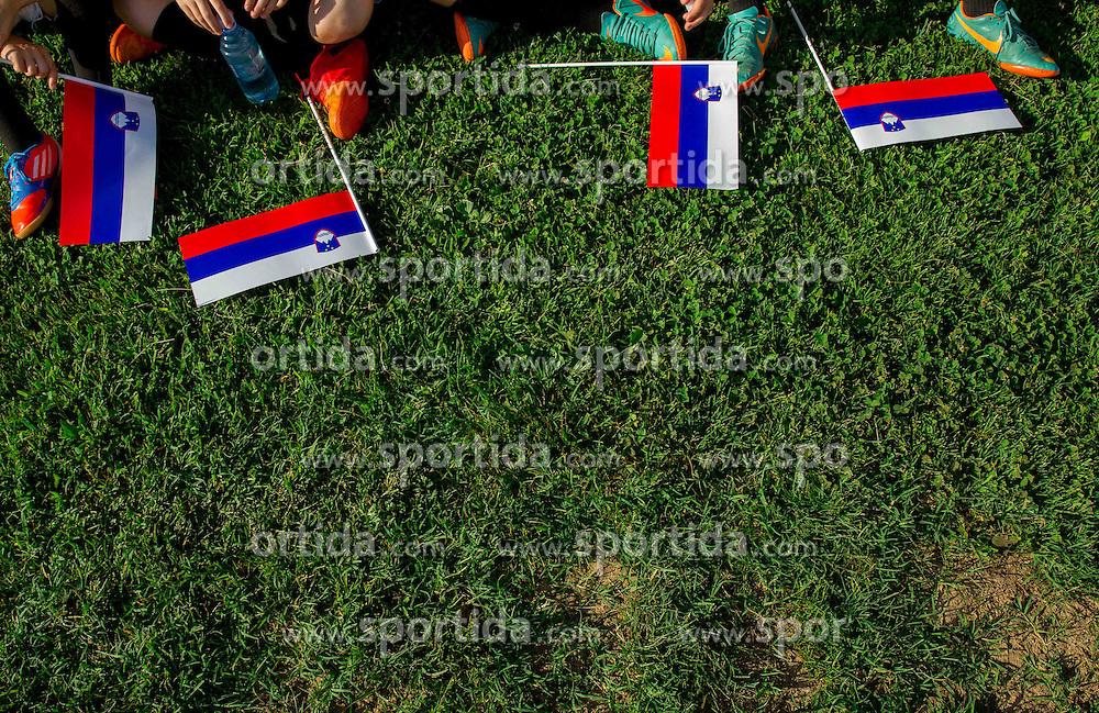Slovenske zastave na dobrodelni nogometni tekmi SD Bilje, katere izkupicek je namenjen Zavodu Lu ter Fundaciji Vrabcek upanja, on June 22, 2013 in Bilje pri Novi Gorici, Slovenia. (Photo by Vid Ponikvar / Sportida.com)