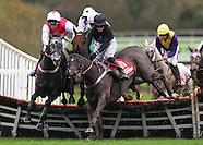 Punchestown Racing 151115