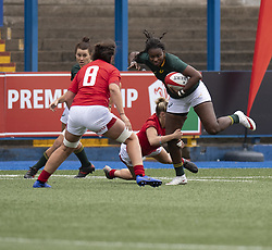 November 10, 2018 - Cardiff, Wales, United Kingdom - S.Africas Nosiphiwo Goda in action during Wales Women v South Africa Women, Autumn Internationals at Cardiff Arms Park Cardiff United Kingdom. (Credit Image: © Graham Glendinning/SOPA Images via ZUMA Wire)