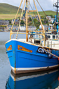 Bright coloured fisherman's trawler moored at Campbeltown Port, Isle of Arran, Scotland