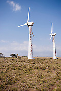 Two stationary wind turbines in a pasture on the Big Island of Hawaii.