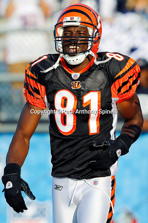 Cincinnati Bengals wide receiver Terrell Owens (81) smiles as he jogs onto the field before the NFL Pro Football Hall of Fame preseason football game between the Dallas Cowboys and the Cincinnati Bengals on Sunday, August 8, 2010 in Canton, Ohio. The Cowboys won the game 16-7. (©Paul Anthony Spinelli)