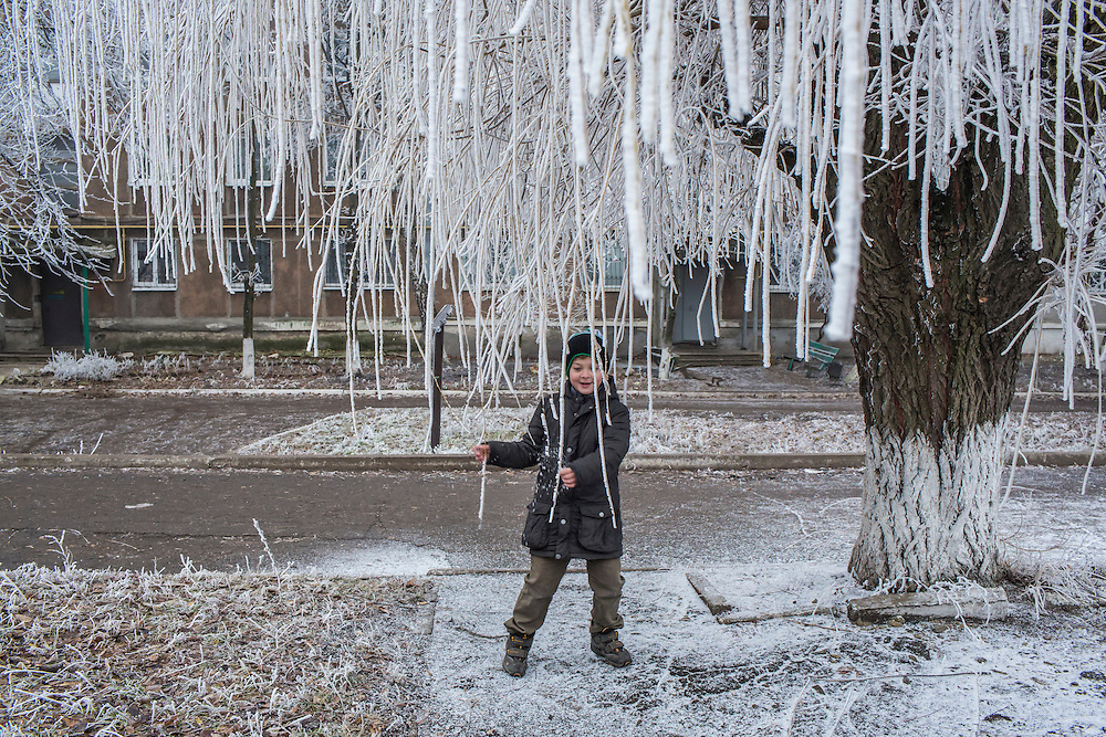 A child plays with the frost-covered branches of a willow tree on Saturday, December 12, 2015 in Zolote, Ukraine.