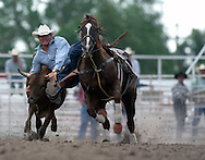 Steer Wrestler, 2004 Cheyenne Frontier Days Rodeo, Cheyenne WY, July 2004