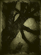 La cathédrale Saint Nicolas - le symbole visible de la Ville de Fribourg. La légende prétend que, si son clocher de 74m n'est pas achevé, c'est parce que l'on manqua d'argent. Joyau du gothique, la cathédrale fut construite entre 1283 et 1490. Die Kathedrale St. Nikolaus ist das weitherum sichtbare Wahrzeichen der Stadt. Sie wurde ab 1283 in mehreren Etappen bis 1490 an der Stelle eines romanischen Gotteshauses erbaut und besitzt einen 76 Meter hohen Turm, dessen Bau 1490 im Stil der späten Flamboyantgotik abgeschlossen. © Romano P. Riedo The gothic cathedral of st nicolas in Fribourg Switzerland