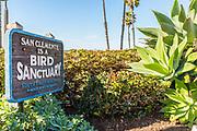 Bird Sanctuary Signage South Coast Audubon San Clemente