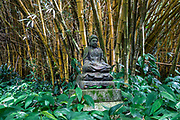 Buddha sculpture in Bamboo Room of Allerton Garden, on the south shore of Kauai, Hawaii, USA. Address: 4425 Lawai Rd, Koloa, HI 96756. Nestled in a valley transected by the Lawai Stream ending in Lawai Bay, Allerton Garden is one of five gardens of the non-profit National Tropical Botanical Garden (ntbg.org).