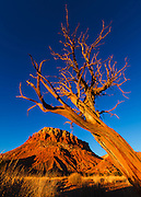 A brilliant blue sky over Ghost Ranch near Abiquiu, New Mexico.