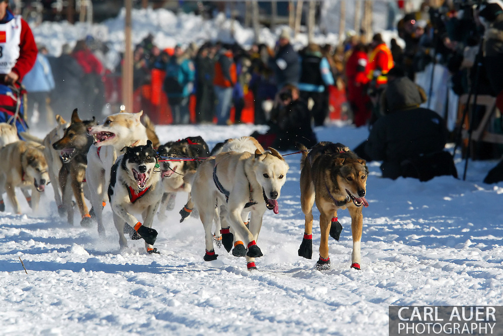 3/4/2007:  Willow, Alaska -  Heads down and feet quickly moving, the lead dogs take the team and sled of Veteran Ramey Smyth of Houston, AK over the frozen ice of Willow Lake at the start of the 35th Iditarod Sled Dog Race